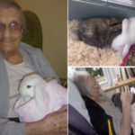 Residents sitting and cuddling baby rabbits at Loose Valley Care Home