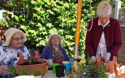 Residents at The Old Downs enjoying planting in the garden