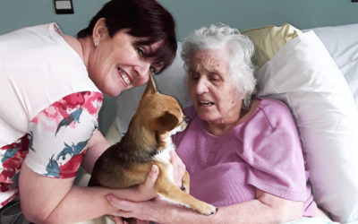 Pet Therapy at Hengist Field Care Home