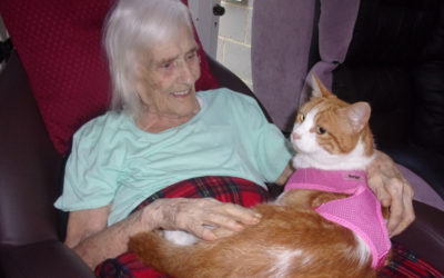 Loose Valley resident with Oliver the cat on her lap