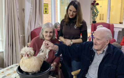 Amazing Animal Encounters at Lulworth House Residential Care Home